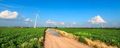 Sommer in landwirtschaftlichem Illinois Stockfotografie