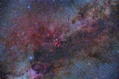 Sommer-Milchstraße Stockbilder