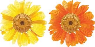Sommer mit Blumen Stockfotografie