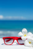 Sommer mit Sonnenbrille und Muscheln auf dem Sand Lizenzfreie Stockfotos