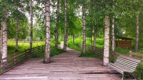 Sommer-Naturlehrpfad Stockfotografie