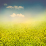 Sommer- oder Frühlingshintergrund stockbild