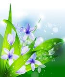 Sommer oder Frühlingsvektor Stockfoto