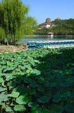 Sommer-Palast China-Peking Stockfotografie