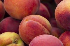 Sommer-Pfirsiche Lizenzfreies Stockbild