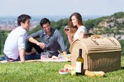 Sommer-Picknick mit Freunden Lizenzfreies Stockfoto