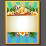 Sommer-Plakat-Kokosnuss Lizenzfreie Stockbilder