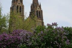 Sommer in Prag (Tschechische Republik, in Europa) mit blühen lila und große Kathedrale von St. Ludmila stockfotografie