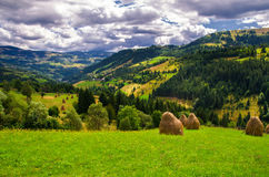 Sommer in Rumänien Stockbild