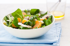 Sommer salad with rocket salad, mandarin, mushrooms and cheese gorgonzola in a white ceramic bowl Royalty Free Stock Photo