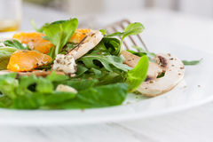 Sommer salad with rocket salad, mandarin, mushrooms and cheese gorgonzola in a white ceramic bowl Royalty Free Stock Photos