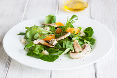Sommer salad with rocket salad, mandarin, mushrooms and cheese gorgonzola in a white ceramic bowl Royalty Free Stock Images
