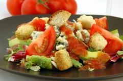 Sommer-Salat stockbilder