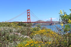 Sommer in San Francisco Lizenzfreies Stockfoto