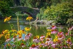 Sommer-Schönheits-Central Park Lizenzfreie Stockfotos