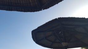 Sommer Sun Lizenzfreies Stockbild