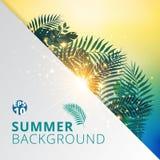 Sommer tropisch mit exotischen Palmblättern oder Anlagen und beleuchten e Lizenzfreies Stockfoto