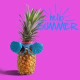 Sommer- und Feiertagskonzept Hippie-Ananas-Mode-Accessoires Stockbild