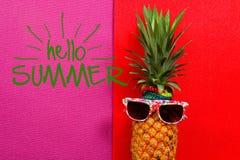 Sommer- und Feiertagskonzept Hippie-Ananas-Mode-Accessoires Lizenzfreie Stockfotografie