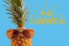 Sommer- und Feiertagskonzept Hippie-Ananas-Mode-Accessoires Lizenzfreies Stockfoto