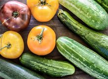 Sommer Veggies Stockbilder