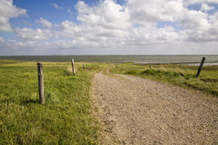 Sommer at the wadden sea. Dirtroad to wadden sea in denmark Royalty Free Stock Image