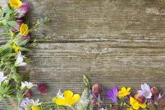 Sommer Wildflowers auf hölzernem Hintergrund Stockbild
