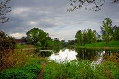 Sommerabend durch den Teich Stockfotografie