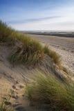 Sommerabend-Landschaftsansicht über grasartige Sanddünen auf Strand Stockbild