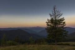 Sommerabend nach Sonnenuntergang in den Karpaten Stockbild