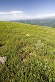 Sommeransicht des hoher Berges stockfoto