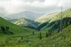 Sommeransicht des hoher Berges lizenzfreies stockfoto