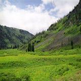 Sommeransicht des hoher Berges lizenzfreies stockbild