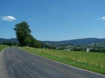 SommerAsphaltstraße über einem Hügel lizenzfreie stockfotos