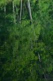Sommerbäume reflektierten sich im Wasser von Teich mit Kräuselungen Lizenzfreie Stockfotos