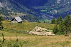 Sommerbauernhof hoch in den französischen Alpen Stockbild