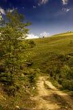 Sommerberglandschaft mit Baum, grünem Gras, Straße und Wolken Stockfotos
