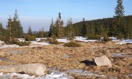 Sommerberglandschaft mit Schnee Lizenzfreies Stockfoto