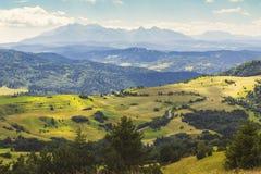 Sommerberglandschaft in Pieniny, Ansicht über Tatra-Berge Stockbild