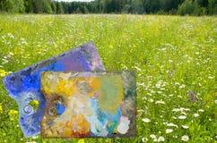 Sommerblühen der Natur und des artist& x27; s-Palette Stockfotografie