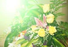 Sommerblume Stockbild