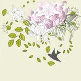 Sommerblumen Stockbild