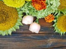 Sommerblumen, -beeren und -anlagen auf einem braunen hölzernen Hintergrund Stockbild