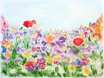 Sommerblumen im Garten-Aquarell handgemalt Lizenzfreies Stockfoto
