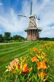 Sommerblumen mit duch Windmühle auf Hintergrund Lizenzfreies Stockfoto