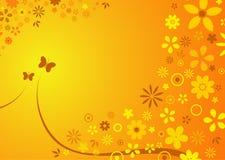 Sommerblumenhintergrund Stockfoto