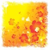 Sommerblumenhintergrund Lizenzfreies Stockfoto
