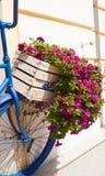 Sommerblumenkasten und -fahrrad Stockfotos