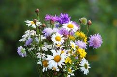 Sommerblumenstrauß Stockbilder