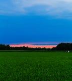 Sommerfeld in Hudson Valley bei Sonnenuntergang lizenzfreies stockfoto